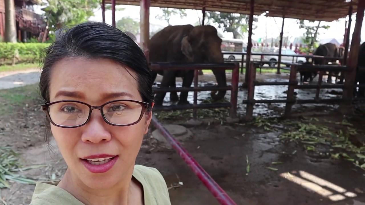 Thai travel: Ayutthaya