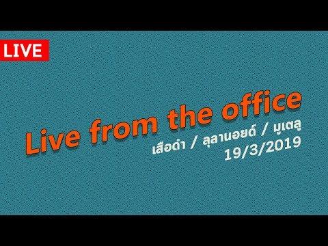 Live from the office. เสือดำ / ลุลานอยด์ / มูเตลู